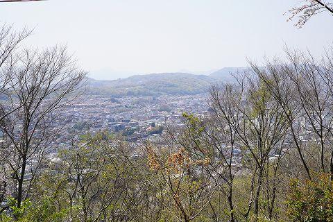 20190406 秦野散策 17.jpg