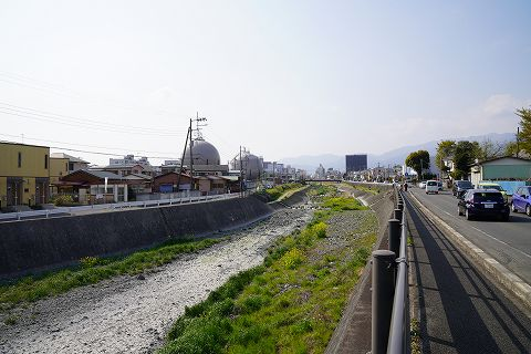 20190406 秦野散策 69.jpg