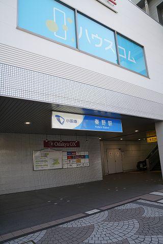 20190406 秦野散策 75.jpg